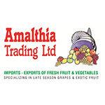AMALTHIA TRADING (NICOSIA) LTD