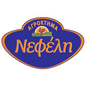 NELI EMPORIO KREATON LTD