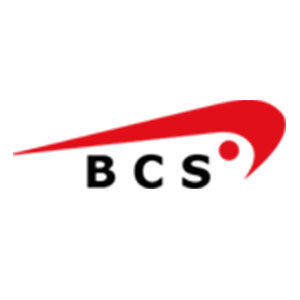Business Consulting Support Ltd